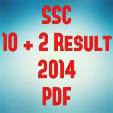 SSC 10+2 result pdf SSC CHSL result 2014 cut off pdf download