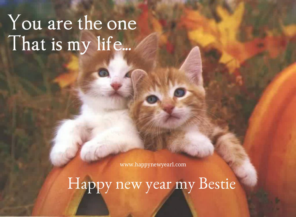 Happy new year cute pic for best friends download now