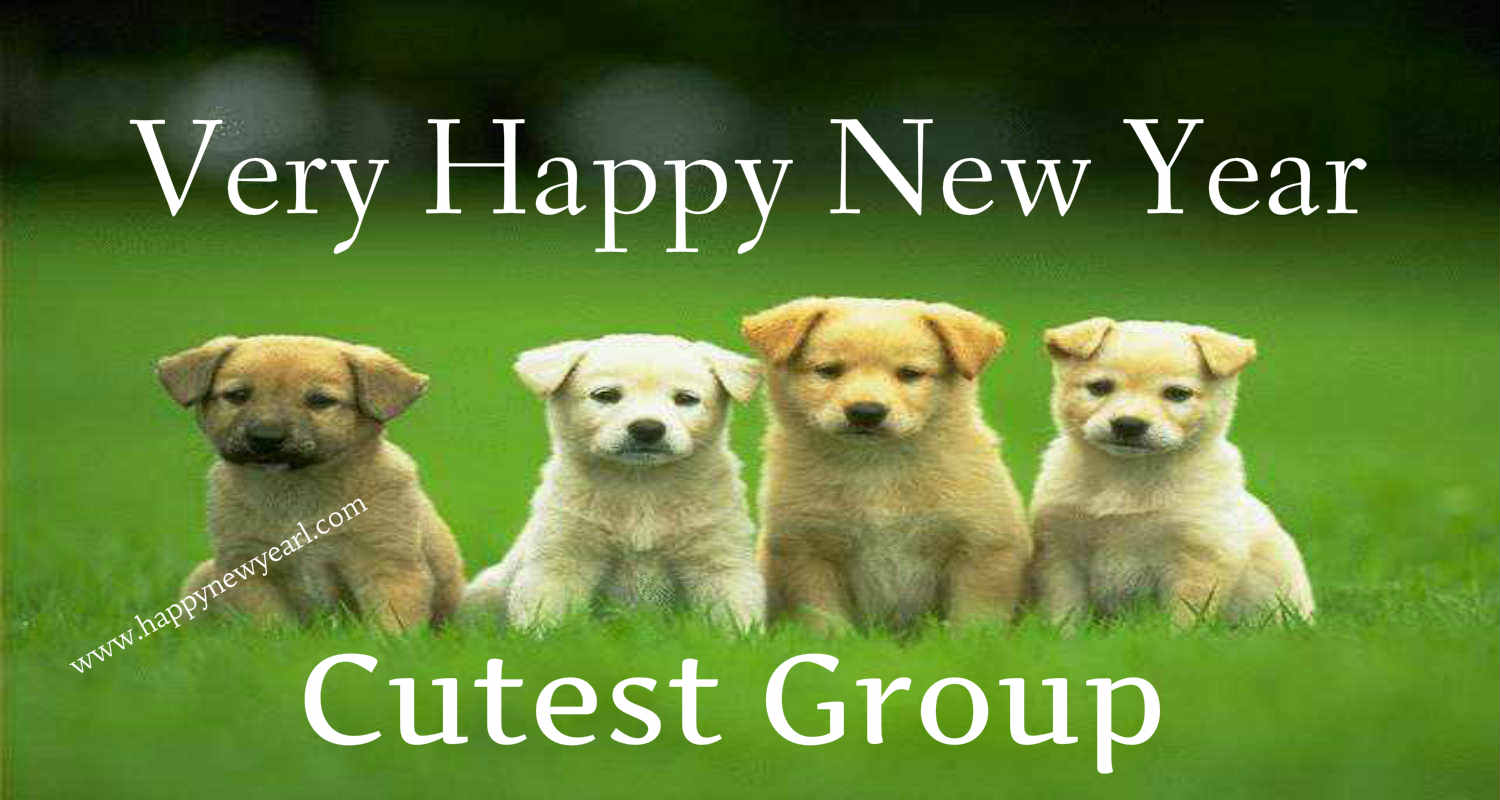 Very cute dog new year wallpaper photo for best friend group