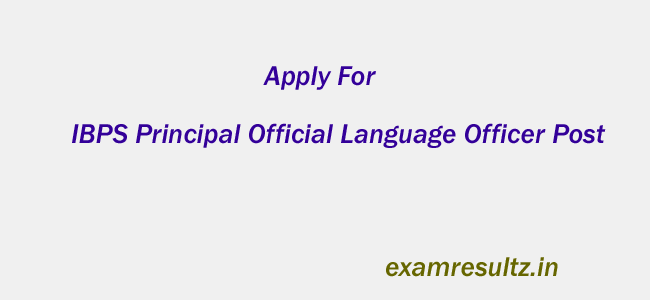 IBPS Principal Official Language Officer Post